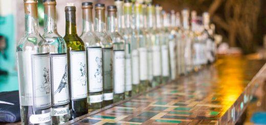 Bottles of Mezcal